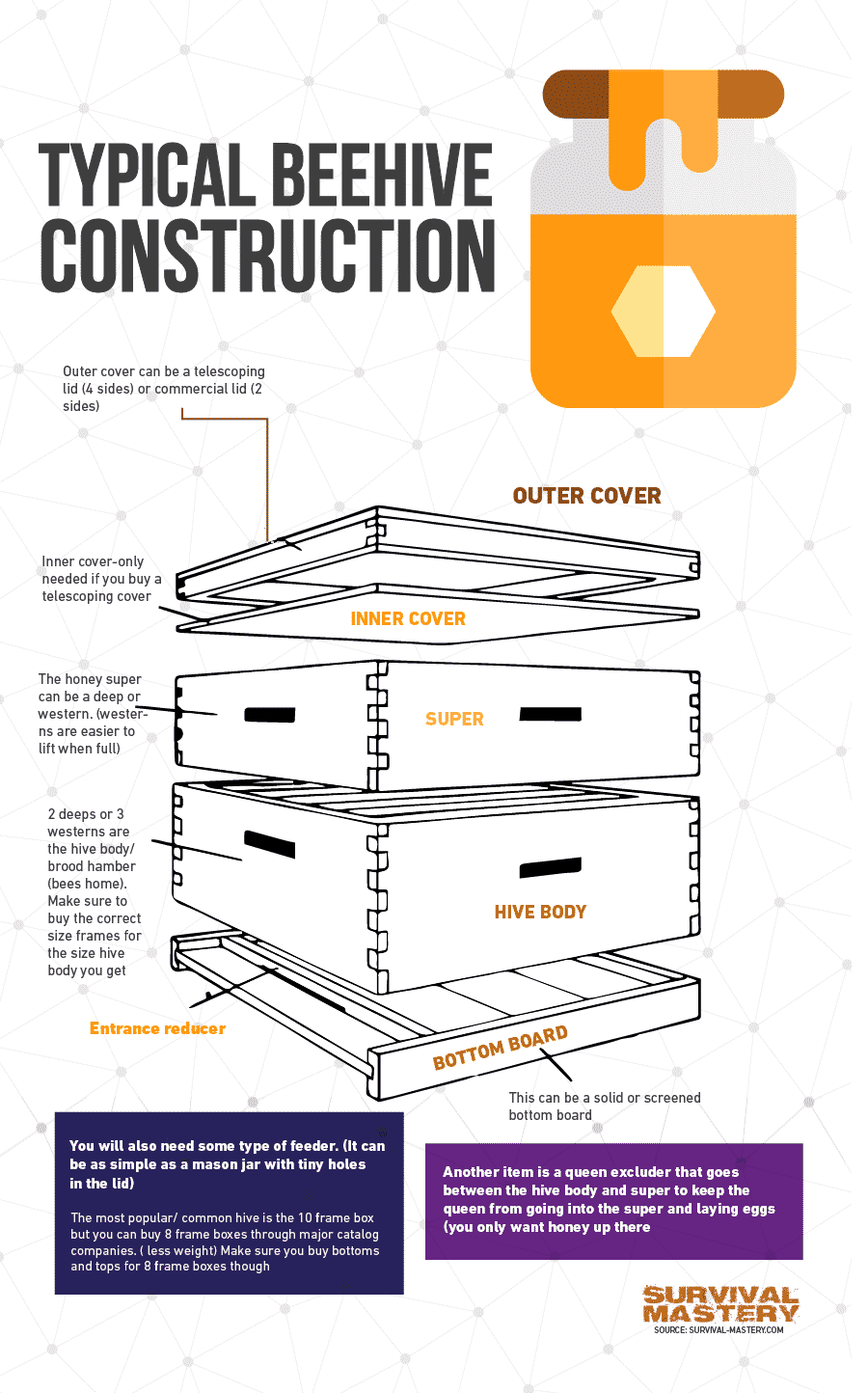 Beehive construction infographic