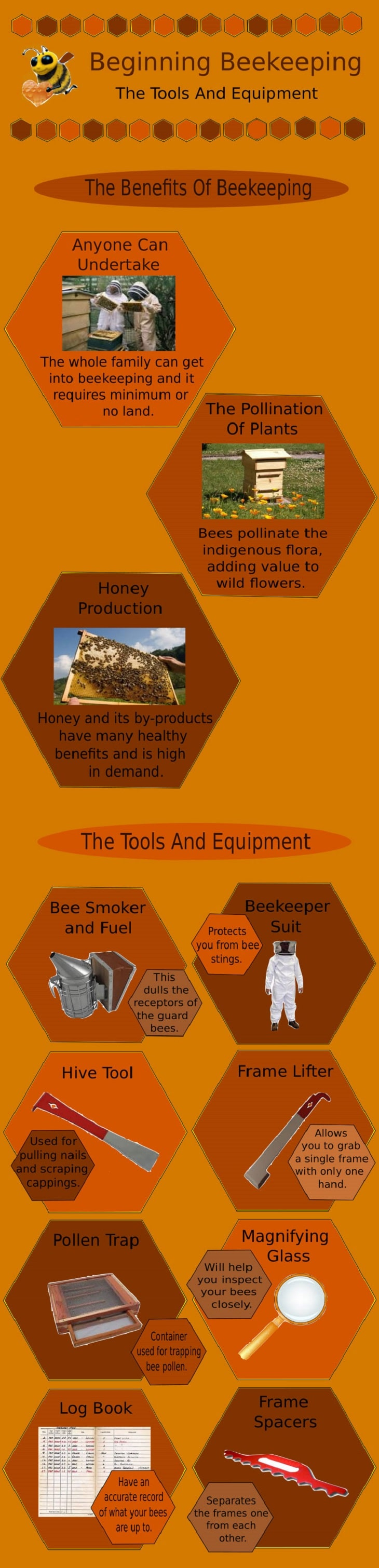 Beekeeping Infographic
