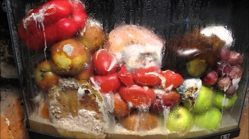 Collecting rotten and decaying fruits