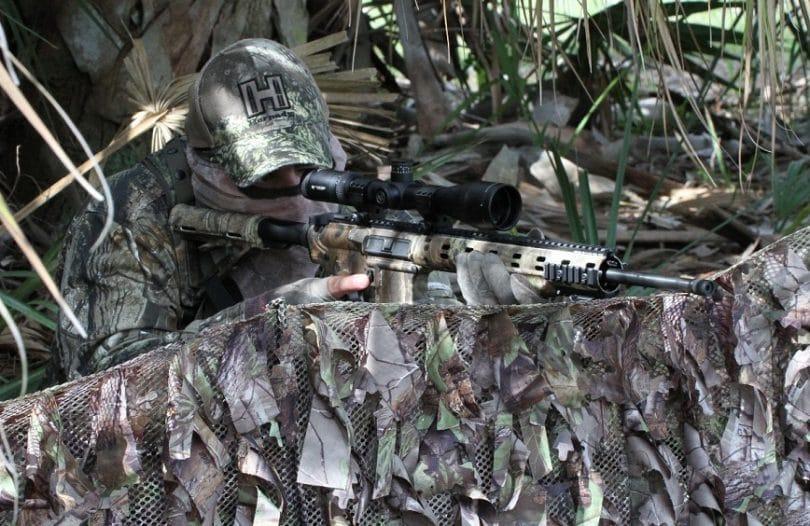 Coyote hunting ambush