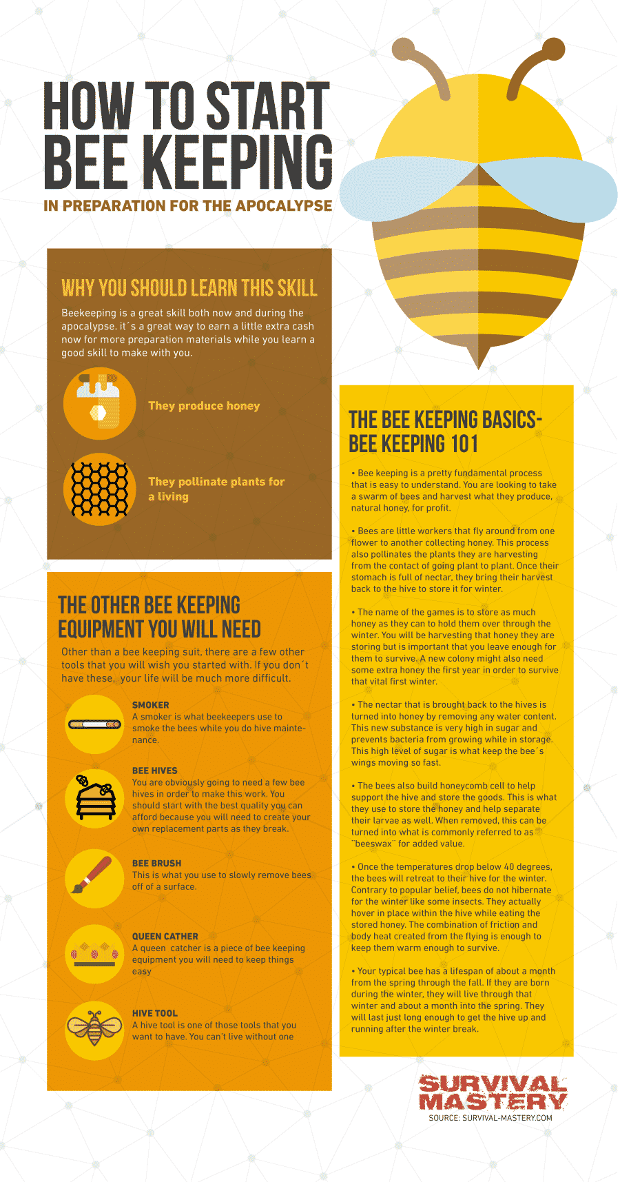 Start bee keeping infographic