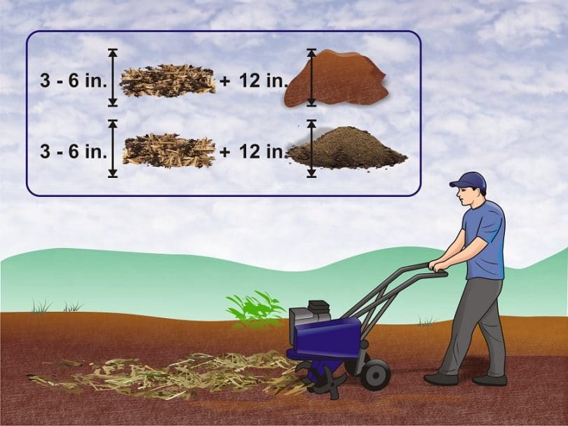 Make the Most of Mulch