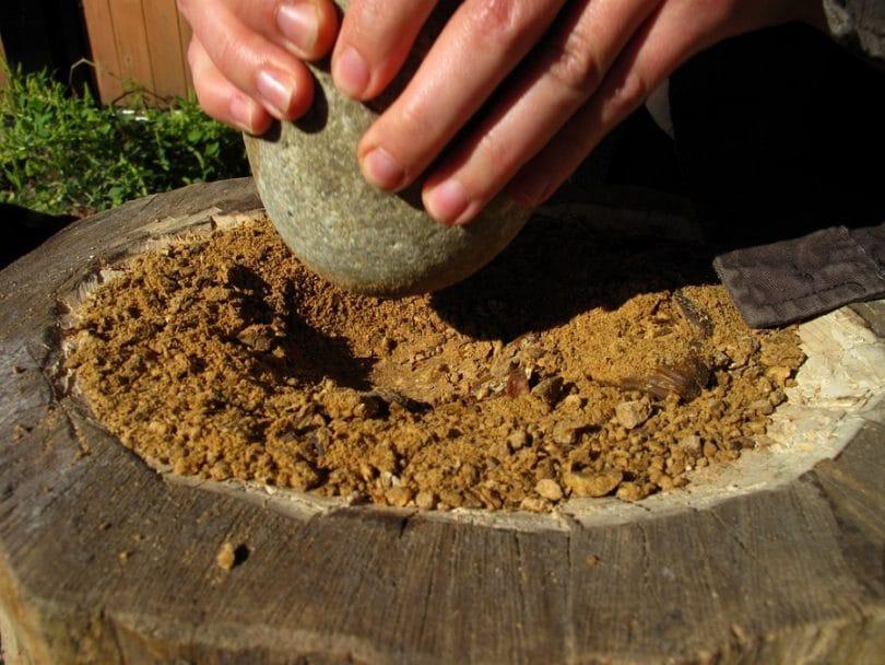 Making acorn flour