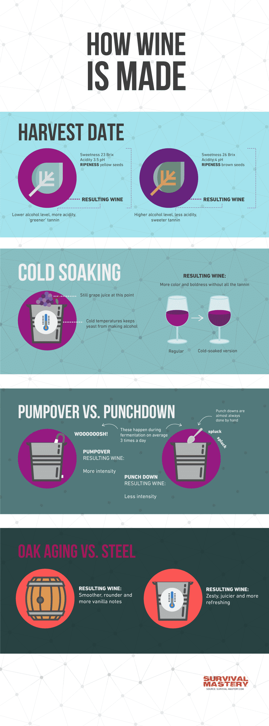 Making wine infographic