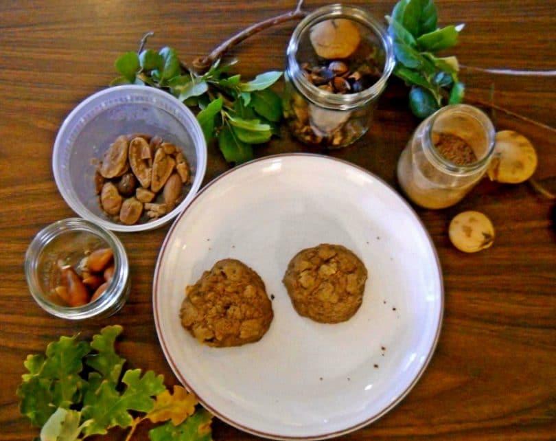 Prepare to eat acorns