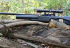 Squirrel_hunting rifle