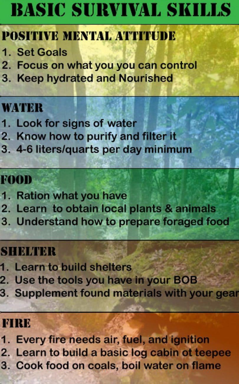 Survival skills infographic