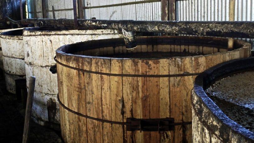 The fermentation process