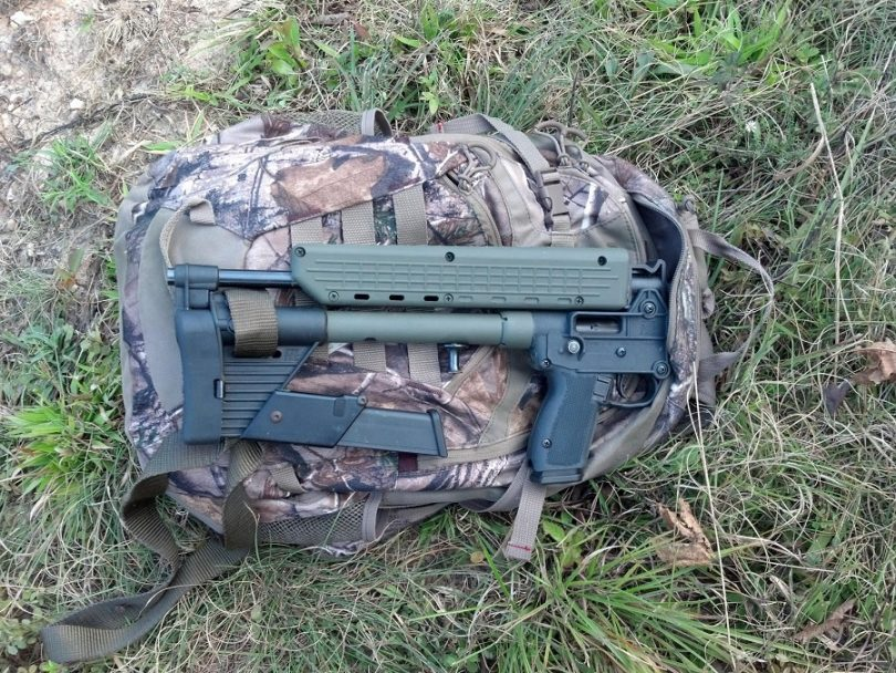 Gun on the bag
