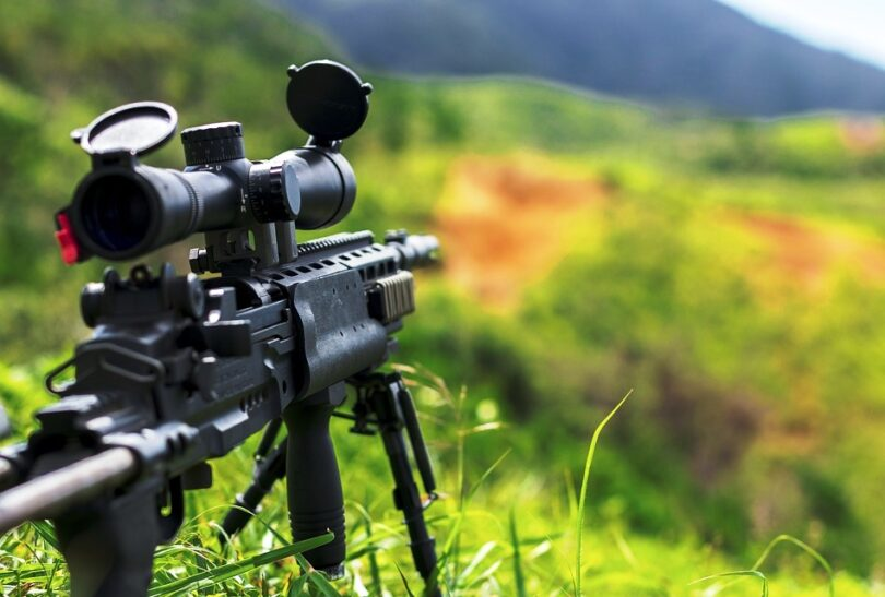 Best Varmint Rifle