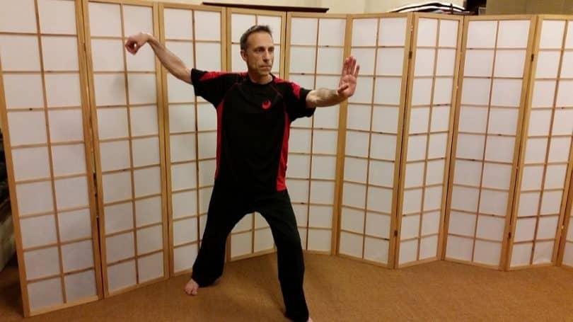 The Single whip kata
