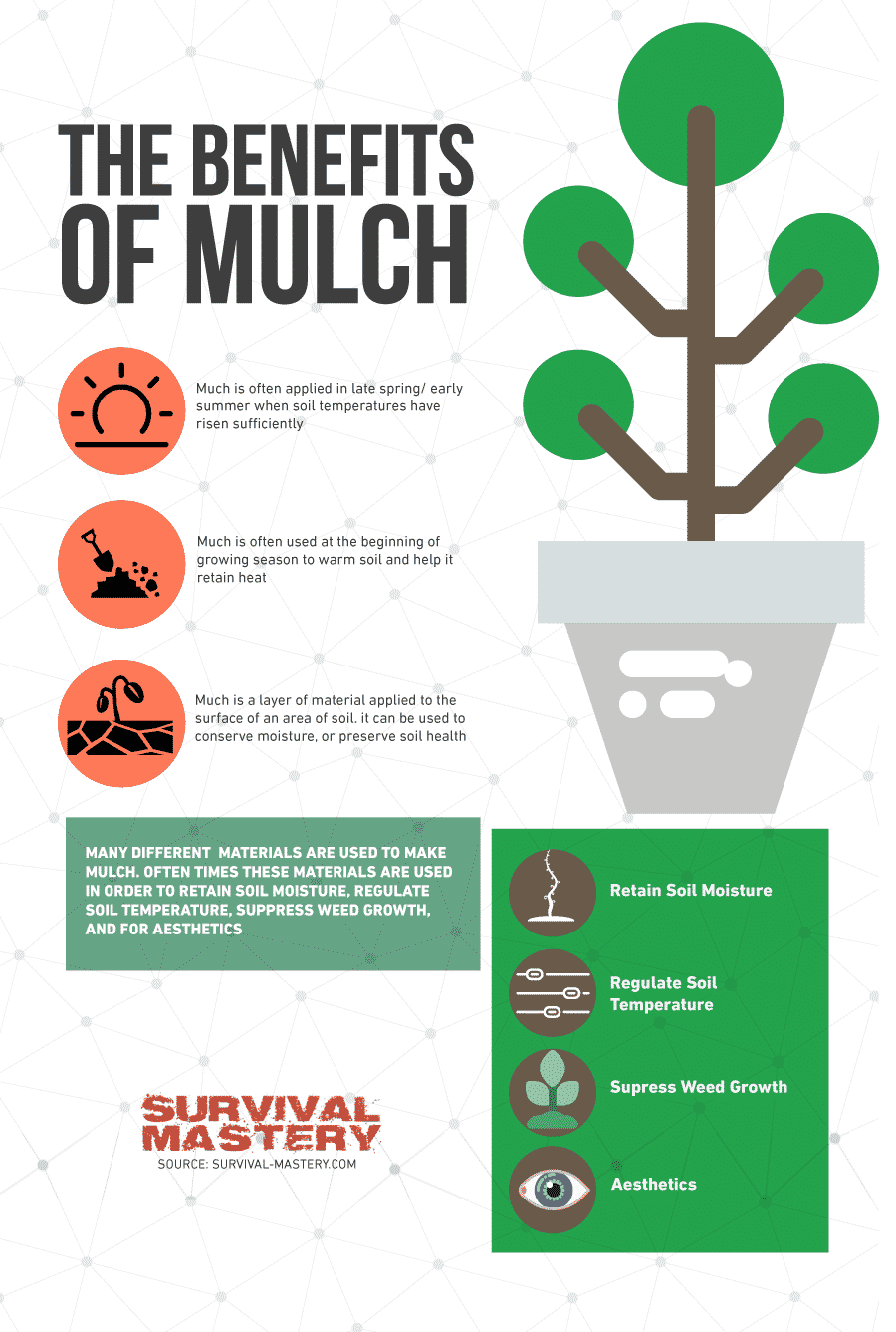 Benefits of mulch infographic