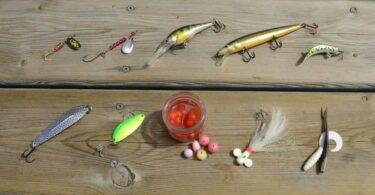 Best rainbow trout bait