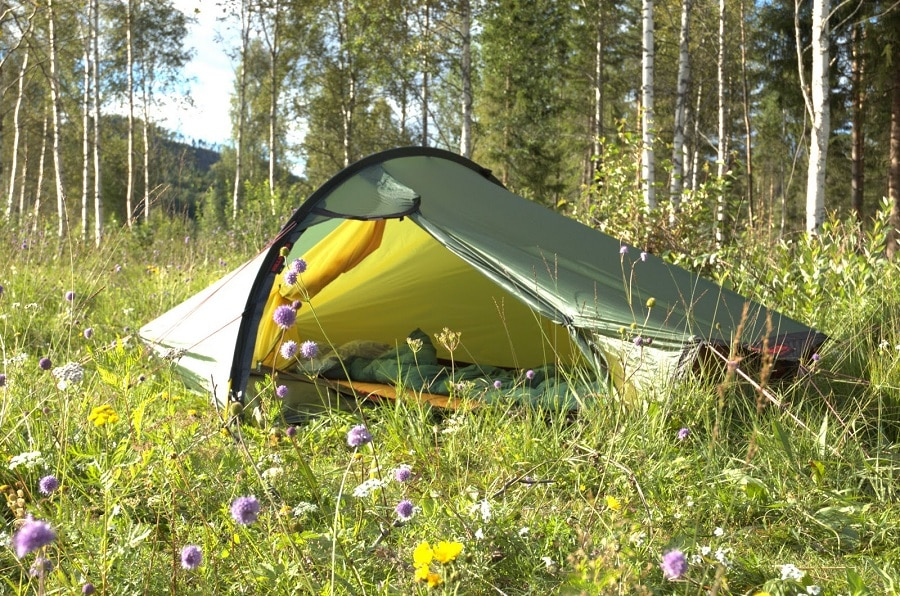 Solo tent in the wild