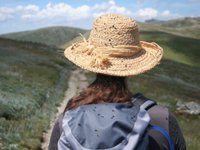 Hiking Sun Hat
