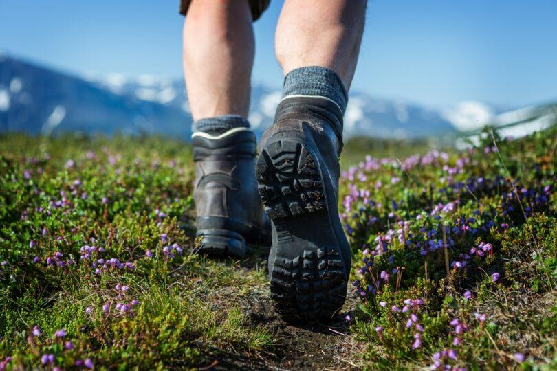 Hiking Through Wildflowers