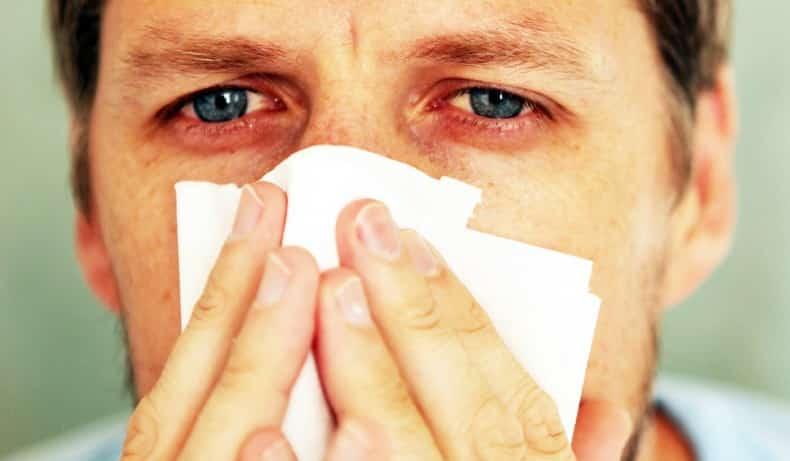 Pillow Allergies