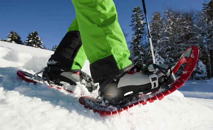Snowshoes Traction
