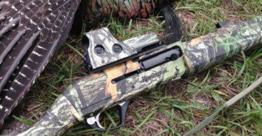 Best Turkey Shotgun Scope