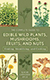 edible wild mushrooms, plants, fruits and nuts