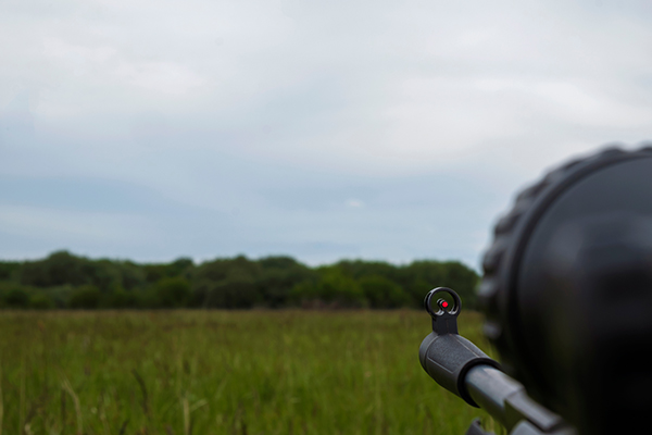 Target shooting with a PCP rifle