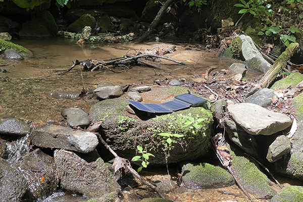 Survival Frog Quadrapro in sun on creek